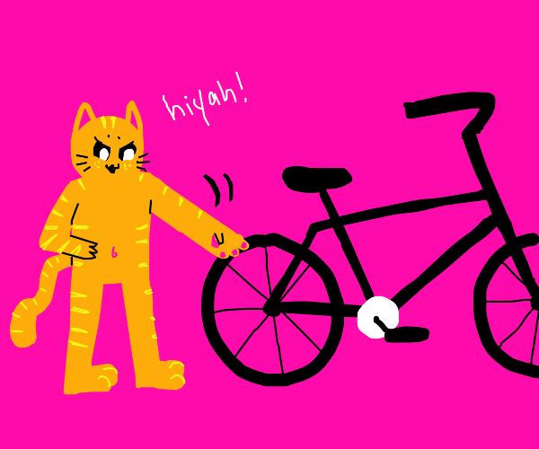 Cat karate chopping a bike