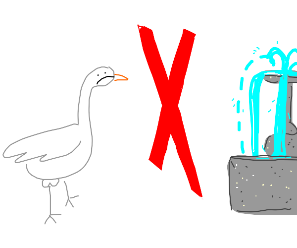 Goose not allowed to drink water
