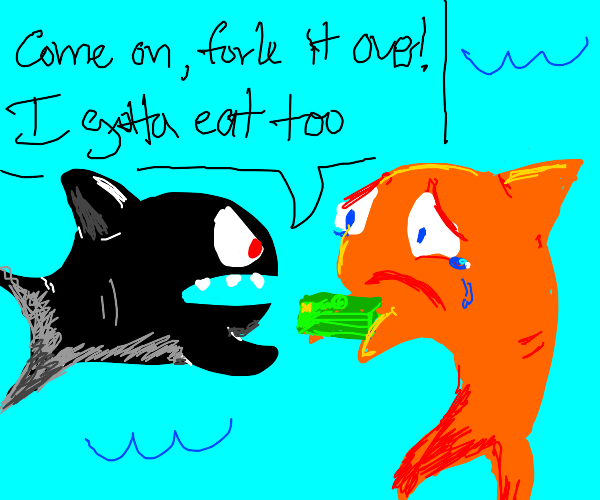 shark wants orange shark lunch money