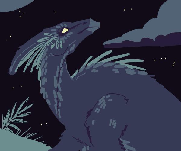 a fluffy dragon
