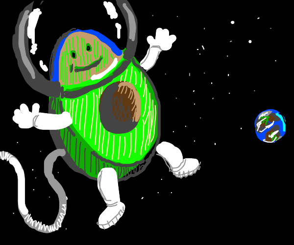 Avocado in Space