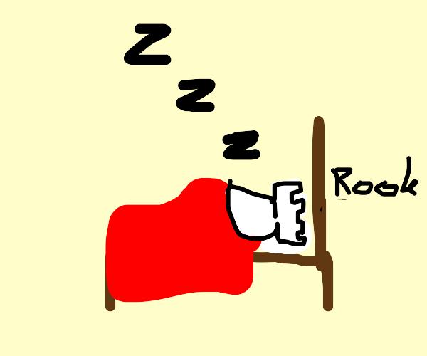 Sleeping rook