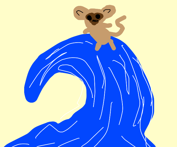 Monkey stands on a wave