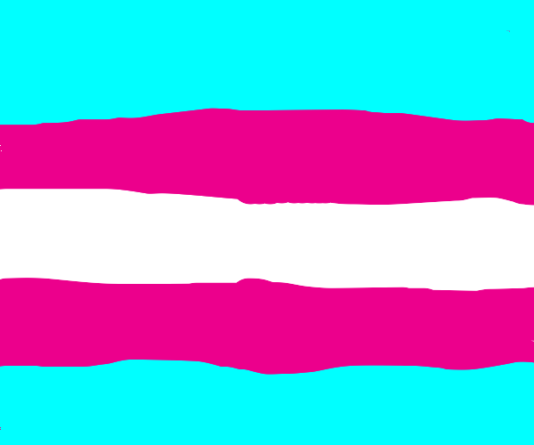 Colourful flag for Trans Rights!