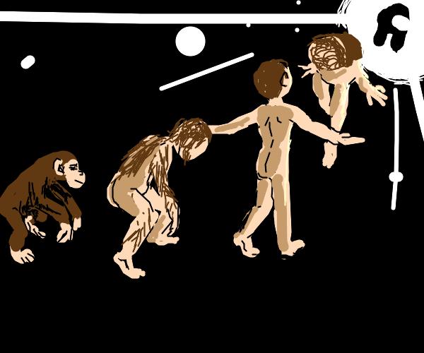 monke - human - SUS evolution chain