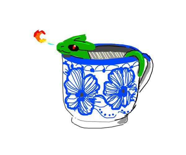 Teacup dwagon