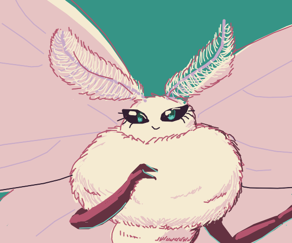 Super fuzzy moth