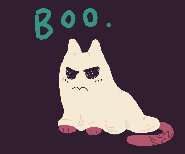 Cat in Ghost costume