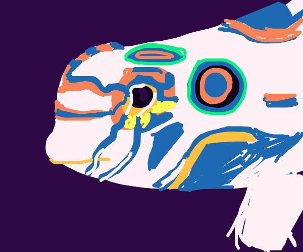 Psychedelic Mandarinfish (Google it)