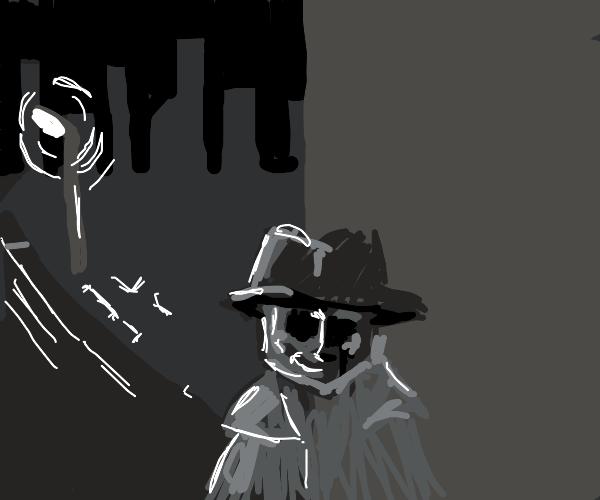 Private Investigator Investigates
