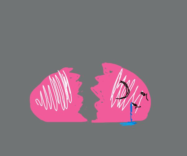 Sad broken egg