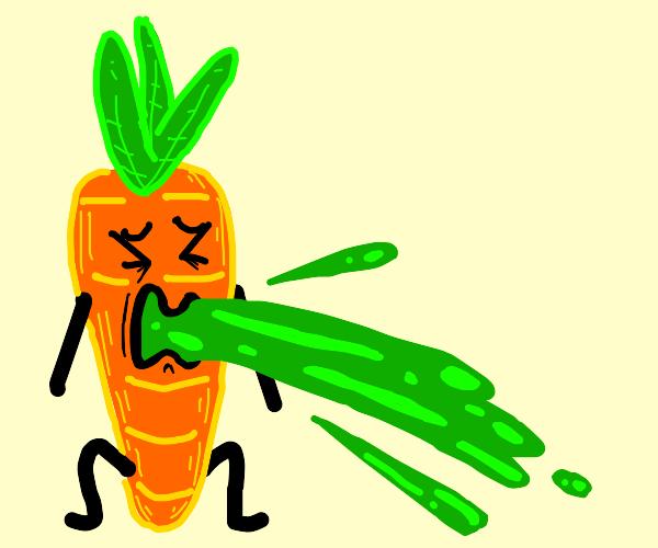 carrot vomit