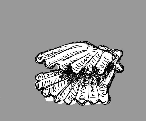Doodle Clam