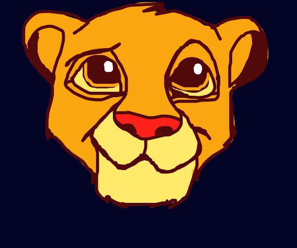 Simba cat