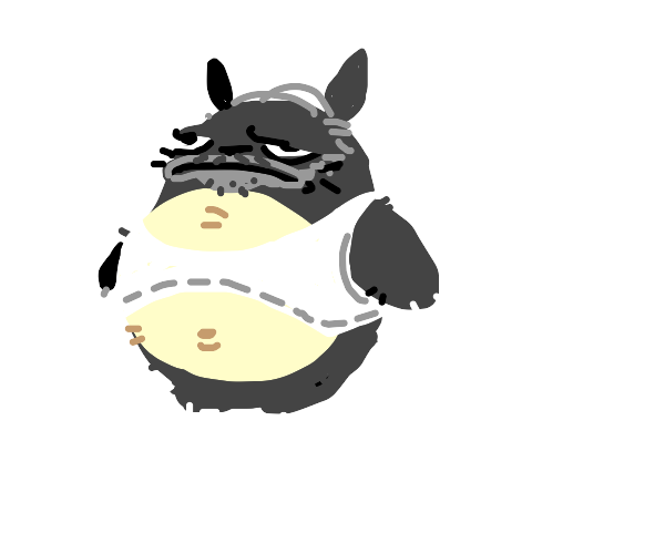 Middle aged Totoro
