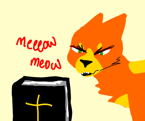 Making cat noises at the Bible