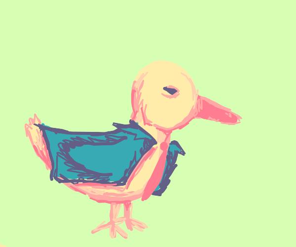 business duck