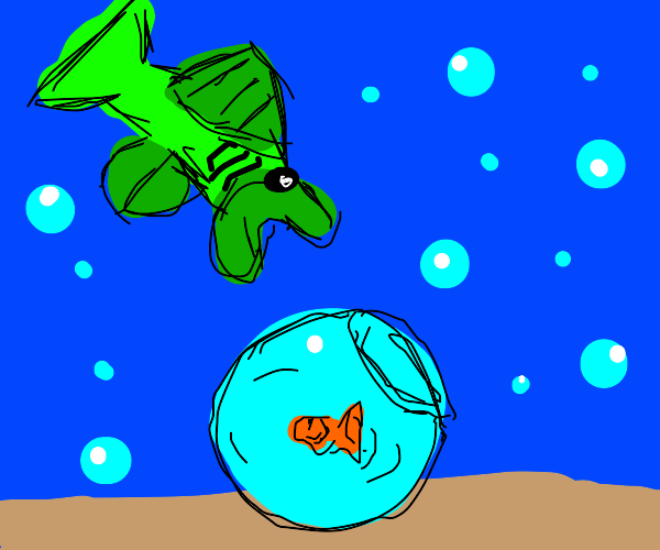 Fish spots a fish bowl in the ocean