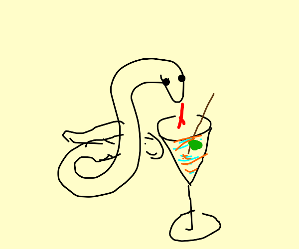 A snake is slurping alcohol