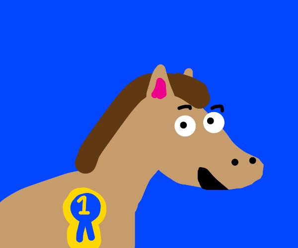 prize winning pony