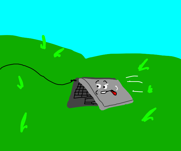 Pet laptop happy to go on a walk