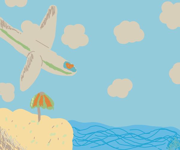 Pig crashes plane into the beach