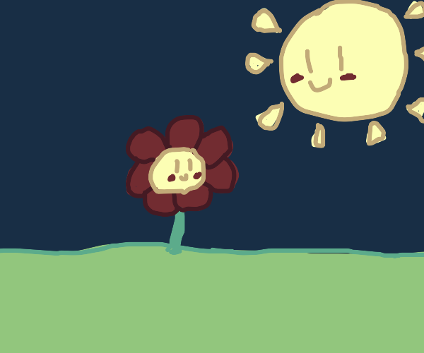 Flower is happy and sun