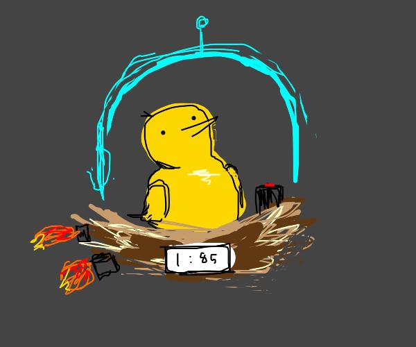 bird in a time machine nest
