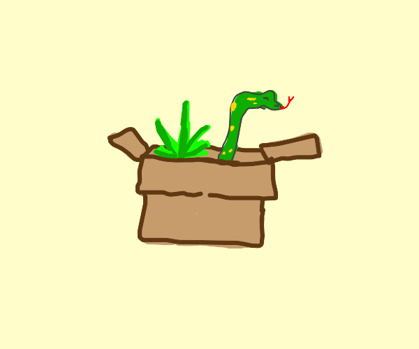 a plant is growing in a box that snake is in