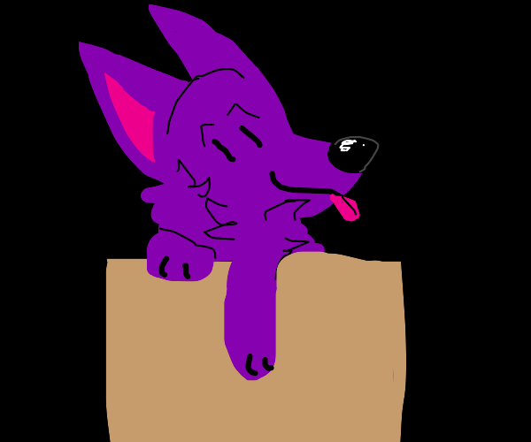 Just a box containing a purple dog