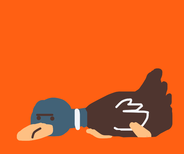 Laying duck