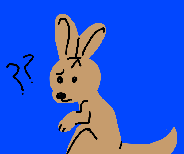 A confused wallaby.