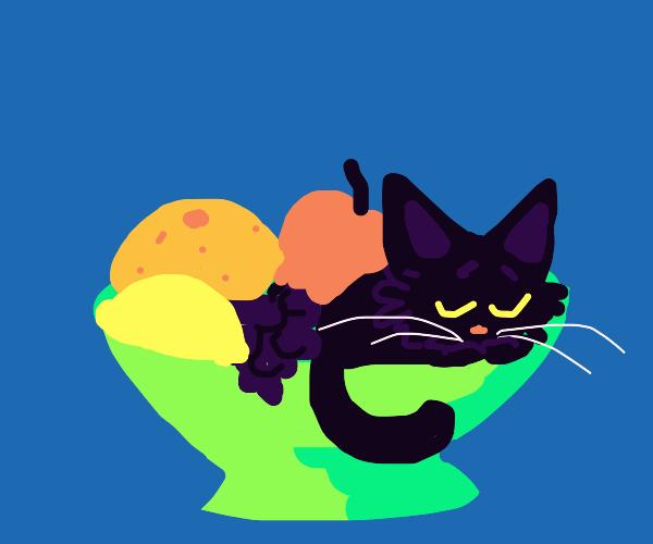 Kitten sleeping in bowl of fruit