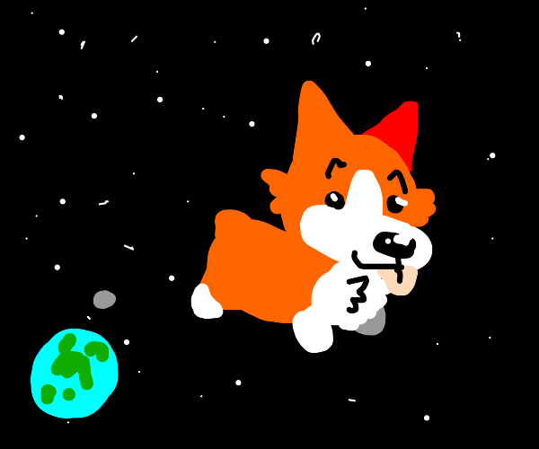 puppy in space