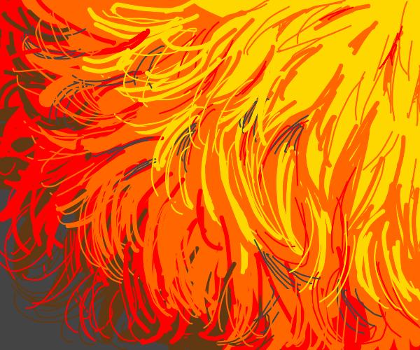 Orange Furr