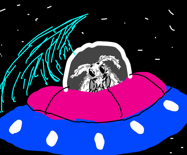 moth in a colorful spaceship