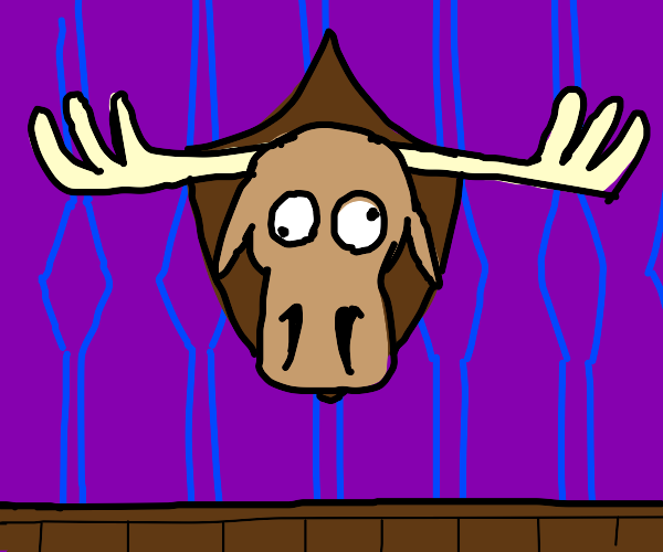 a moose head wall mount