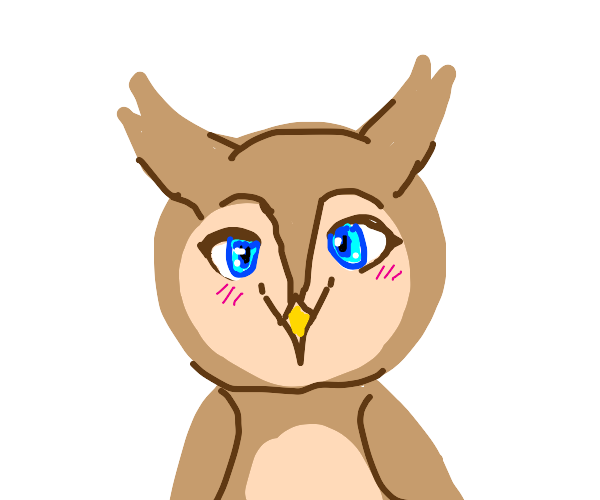 owl with anime eyes