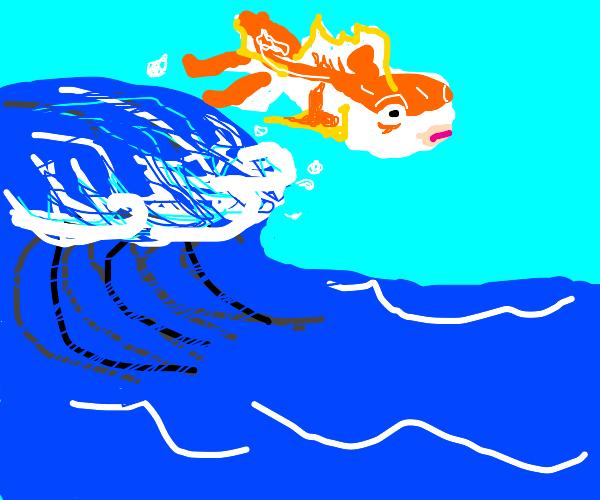 Flying Goldfish jumps wave
