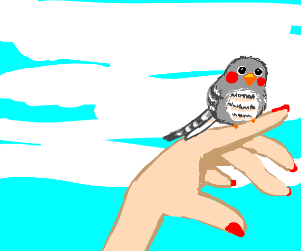 Bird perches on woman's hand
