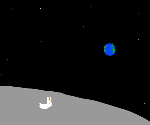 Bunny on the Moon
