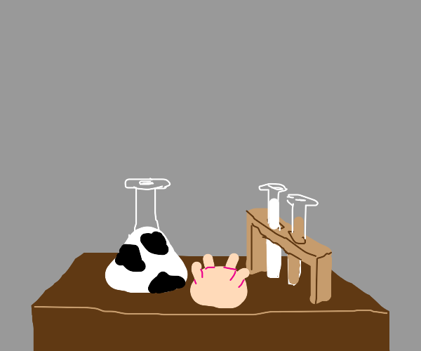 Cow chemistry