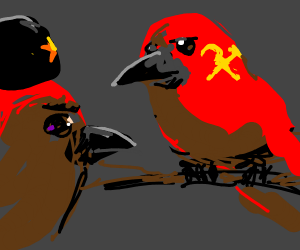 Two stealthy communist birds in red