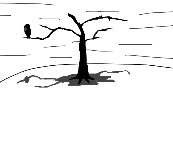 crow sitting on a dead branch