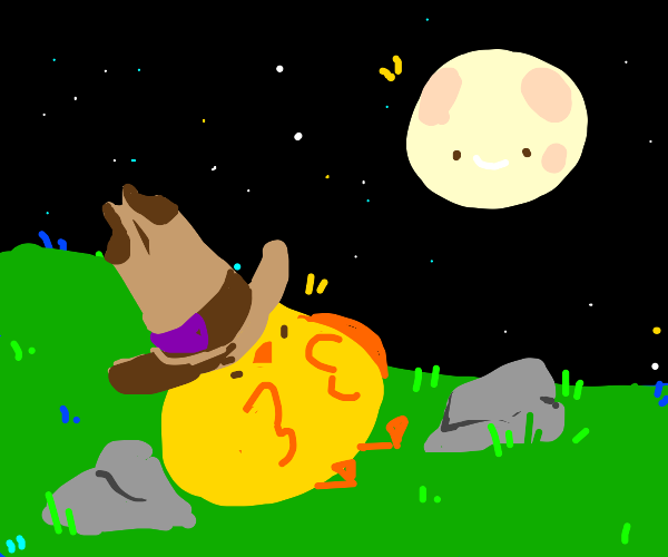 Cowboy baby chick camping out under start sky
