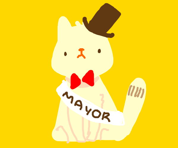 cat mayor