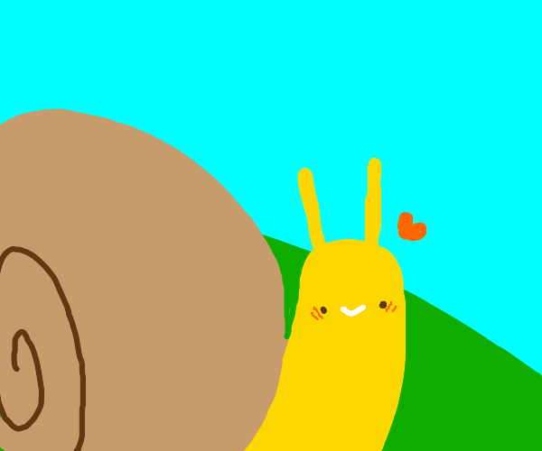 Cute snail loves you.