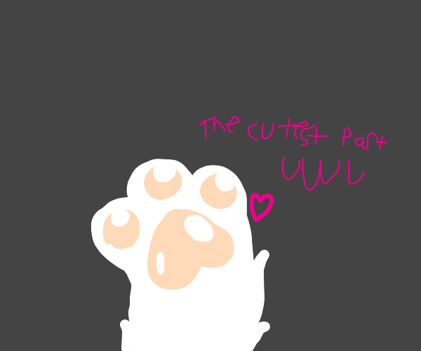the paws are the cutest part