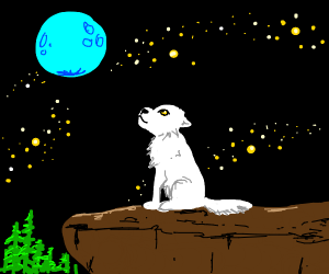 white wolf watching the moon