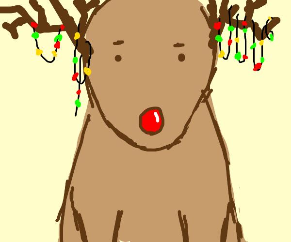 Something festive